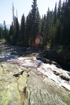 Rainbow Falls Trail At Glacier - Montana - USA