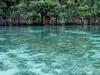 Raja Ampat - Papua - Indonesian Lagoon