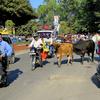 Rajpur Road - Dehradun