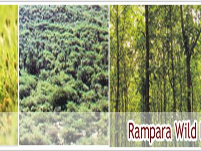 Rampara Wildlife Rajkot