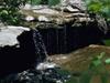 Randolph County State Recreation Area