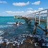 Rangitoto Dock - Auckland NZ