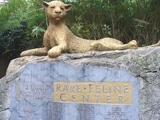 Rare Feline Center - Sacramento Zoo
