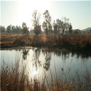 Ratapani Wildlife Sanctuary