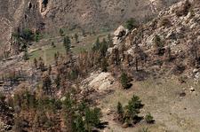 Red Gulch Dinosaur Site