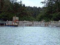 Reducto Lake
