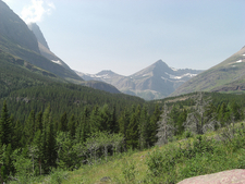 Redrock Falls Trail - Glacier - Montana - USA