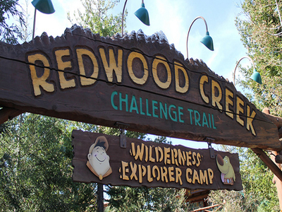 Redwood Creek Trail