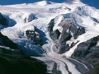 Regal Montaña