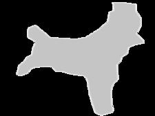Regional Map Of Christmas Island