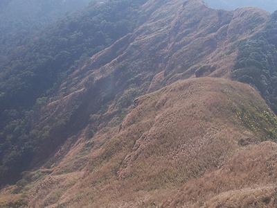 Reiek Tlang Mamit Mizoram