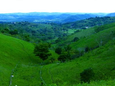 View Of Terreno Jose Leonel