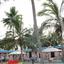 Resort & Coconut Palms