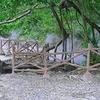 Rimbo Panti Nature Reserve »