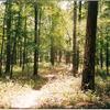 Rim Trail 139 - Tonto National Forest - Arizona - USA