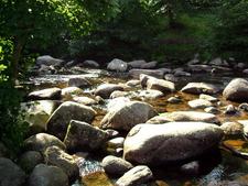 River Dart At Dartmeet