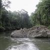 River Inside Danum Valley - Sabah