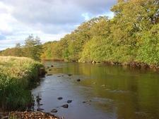 River Rede