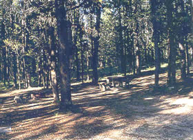 Riverside Campground Lowman