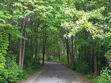 Road Inside Wildwood Preserve - Toledo OH