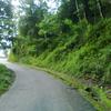 Road To Perbing