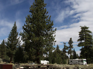 Robinson Flat Campground