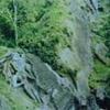 Rock Cut Caves