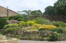 Rock Kew