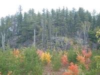 Rock River Canyon Wilderness