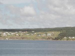 Rocky Harbour Terranova y Labrador