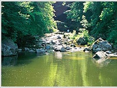 Rodltal Valley & Waldbad Swimming Pond