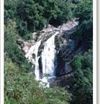 Rongbang Dare