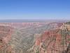 Roosevelt Point Trail View - Grand Canyon - Arizona - USA