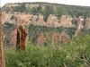 Roosevelt Point View - Grand Canyon - Arizona - USA