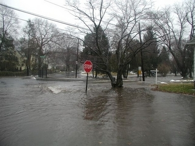 Rooster River Flooding