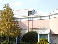 Rosalie Whyel Museum Of Doll Art