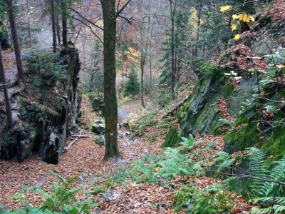 Route Through Gorge Of Złoty Potok