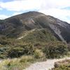 Ruahine Range Trails