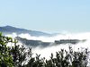 Ruahine Ranges - Melting Snow