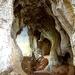 Ruakuri Caves & Bush Scenic Reserve - North Island - New Zealand