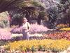 Rufolo  Gardens