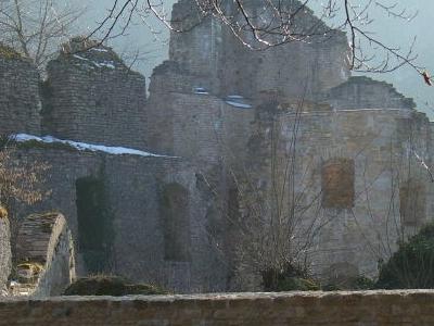 Chateau De Morimont Ruins