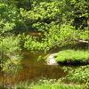 Small River Creuse Limousin