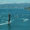 Rush Hour @ Wellington Harbour NZ