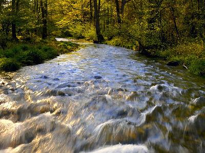 Rush River