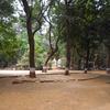 Ryewood Parque