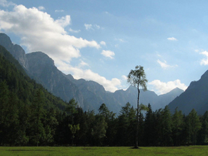 Radovna Valley