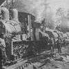 Railroad Logging In South Kaibab