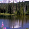 Mount Rainer, Cascade Range, Washington