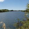 Rangitaiki River